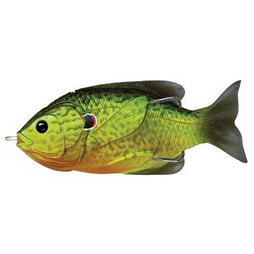 Immagine di Livetarget Hollow Belly Sunfish
