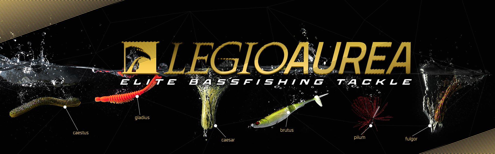 bass fishing, esche da bass, esche da spigola, esche rigide, jerkbait, wtd, popper, esche da trout area, trout game, pesca in mare, spinning in mare, spinning laghetto